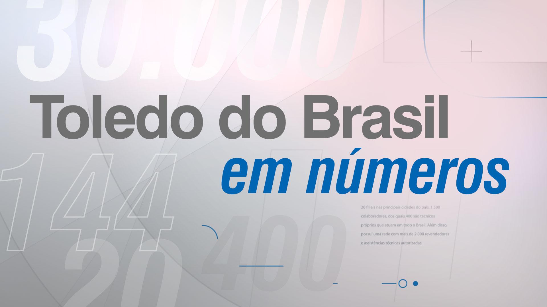 Toledo do Brasil em números